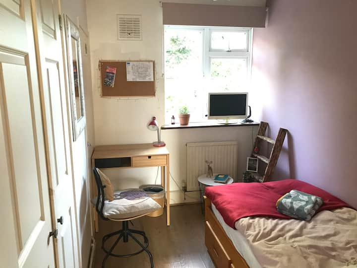 Lovely single room in a cosy garden flat