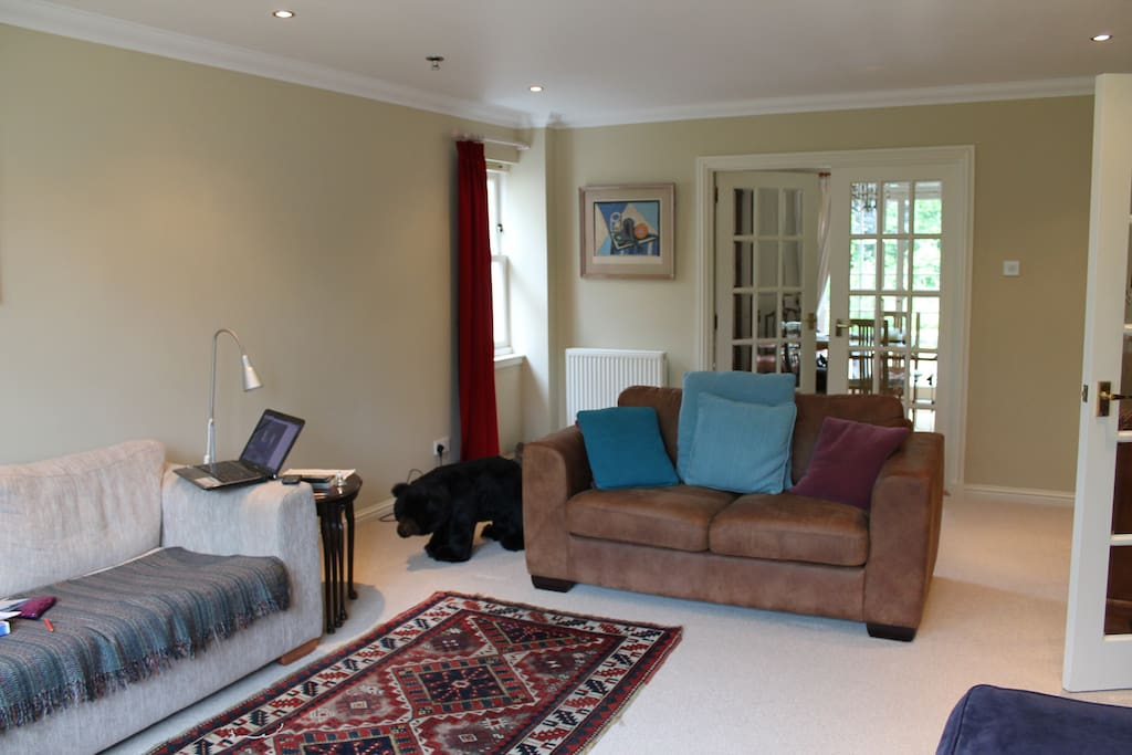 large living room with flat screen television  and WiFi