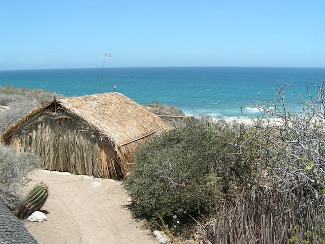 All Solar Palapa • Shipwrecks Break - San Jose Del Cabo