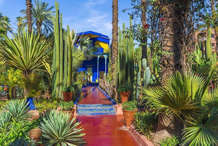 Astonishing apartment & nicely equiped, Majorelle