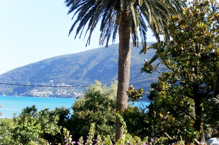 Double Room with Balcony and Sea View - Herceg - Novi - Apartment