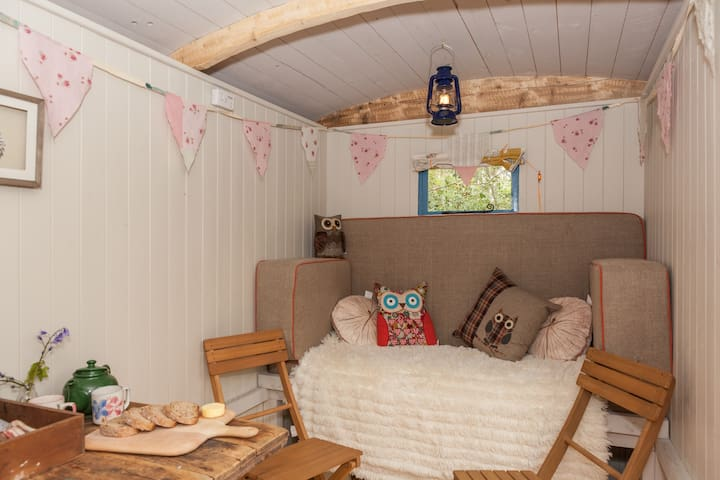 Shepherds Hut in Purbeck Woodland . - Wareham