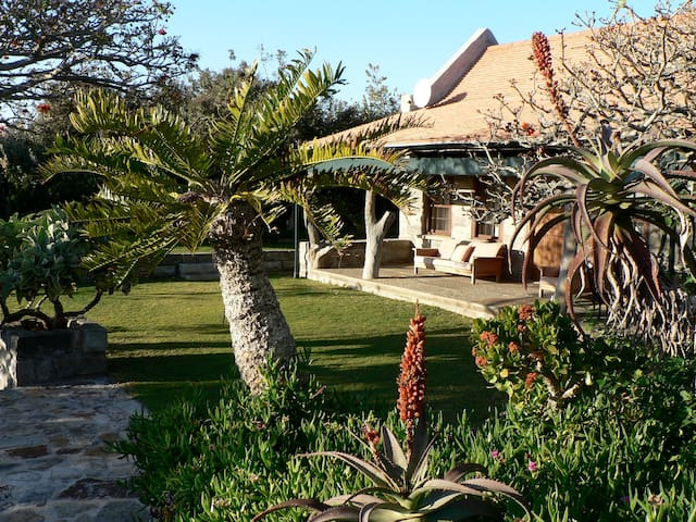 Charming Sandymount - Port Alfred - Huis