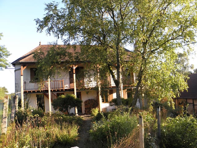 Beautiful house next to river - la Chapelle aux Chasses - House