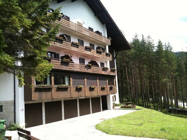 Apartment on the edge of the forest - Armentarola - Byt