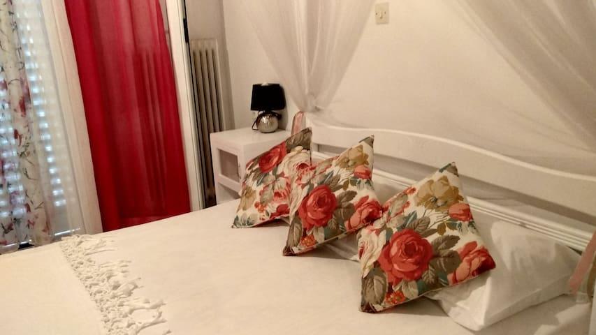 Comfortable two bedroom appartment - Argostoli