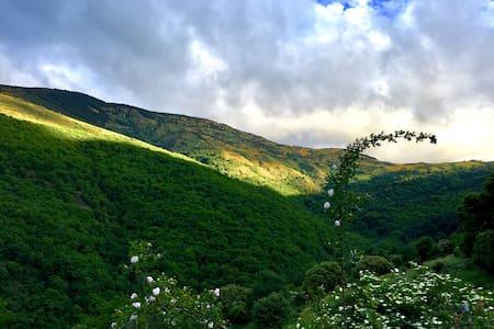 la Coutinelle, Parc National des Cévennes, gite