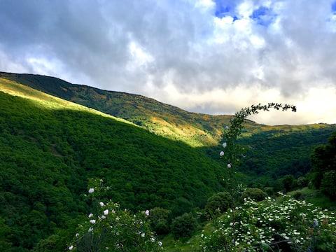 la Coutinelle, Cévennes National Park, gite