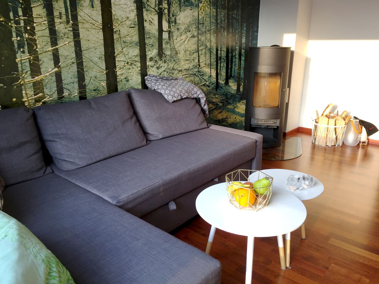 In the living room area you will find a sofabed and cosy fireplace.