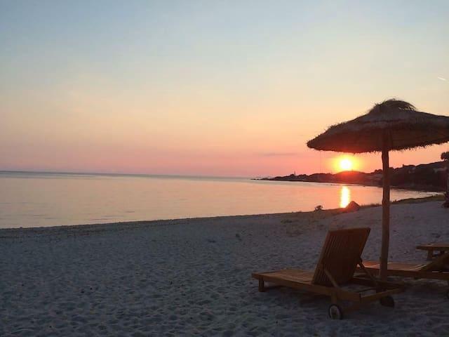Top 20 Des Locations De Vacances 224 Pietrosella Locations