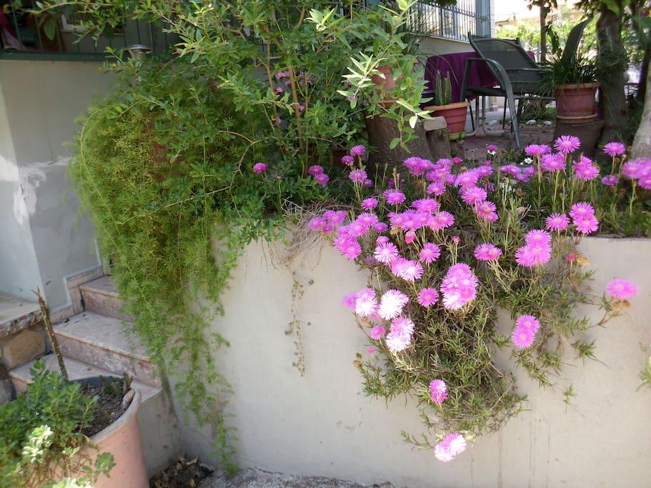 Empfang mit Blüten