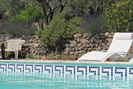 Lovely olive grove setting - Flayosc - Apartment