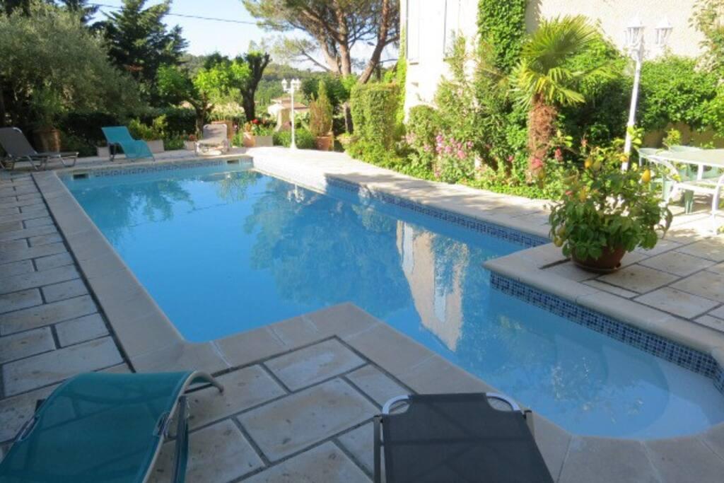 La piscine vue du studio