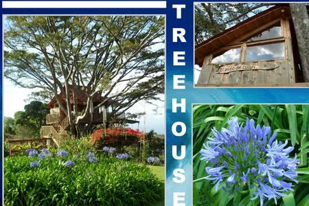 UNIQUE TREEHOUSE UP IN THE SAN JOSE HILLS - ESCAZU - Escazú - Treehouse