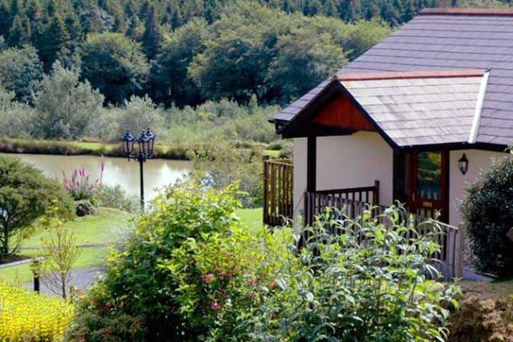 Wagtail Lodge at Blagdon Farm - Beaworthy - Dom