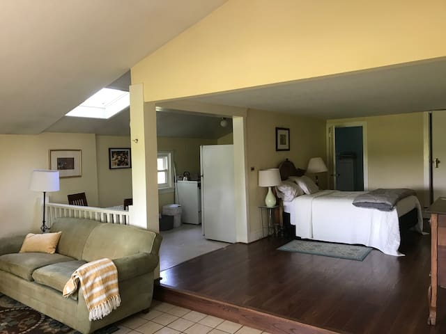 Light, clean, large, private, Junior 1 Bedroom