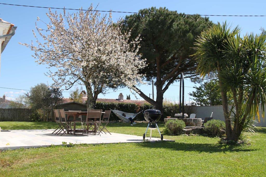 Jardin arboré avec un magnifique pin parasol, support naturel du hamac
