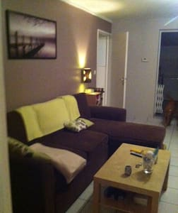 Bel appartement ensoleillé et vert - Saint-Étienne - 公寓