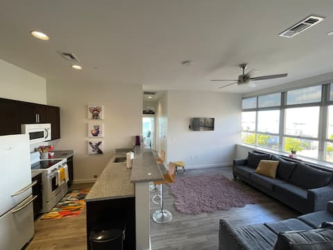 *NEW* CHIC DOWNTOWN LSU RIVER VIEW CONDO