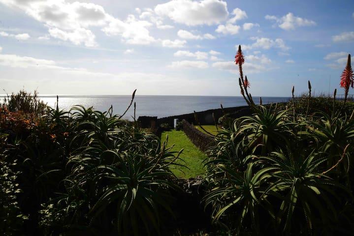 Casa da rocha (Establishment number 331) - Lagoa - Ponta Delgada S. Miguel Açores - House