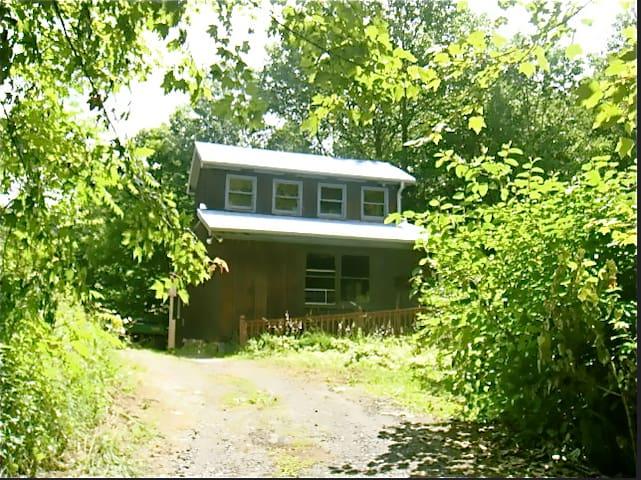 Cabin Near Virginia Creeper Trail - Lansing - บ้าน