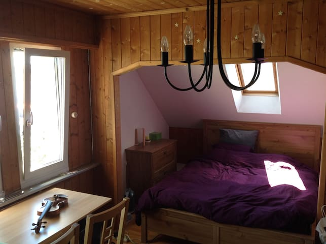 1 room & 2 Sofa Beds in Gümligen, 8 mins from Bern - Muri bei Bern - Appartement