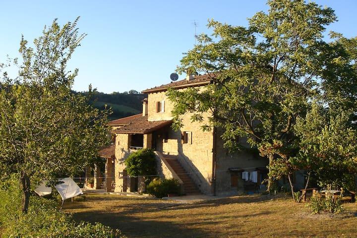 Cтаринная итальянская усадьба. - Casella di Castelnuovo Castagneto