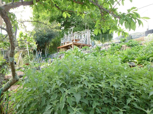 View through the herb garden towards the sea-view deck