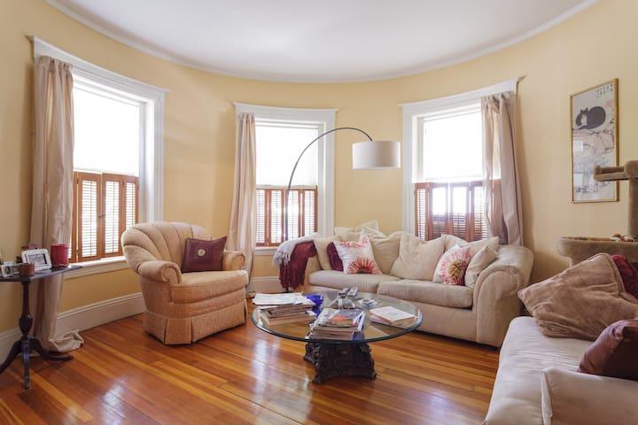 Cozy & Airy Room in Coolidge Corner - Brookline - Appartement en résidence
