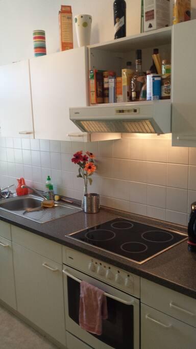 2 raum wohnung direkt am lindi wohnungen zur miete in leipzig sachsen deutschland. Black Bedroom Furniture Sets. Home Design Ideas