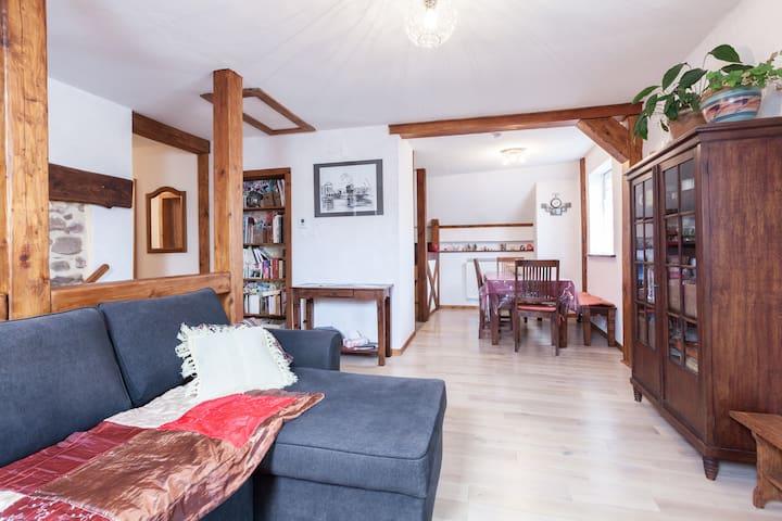 Maison typique en centre Alsace - Neubois - Hus
