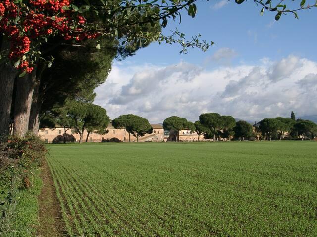 Tenuta Pantano Borghese - Trilocale - Rom