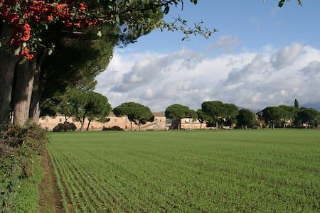 Tenuta Pantano Borghese - Trilocale - Roma