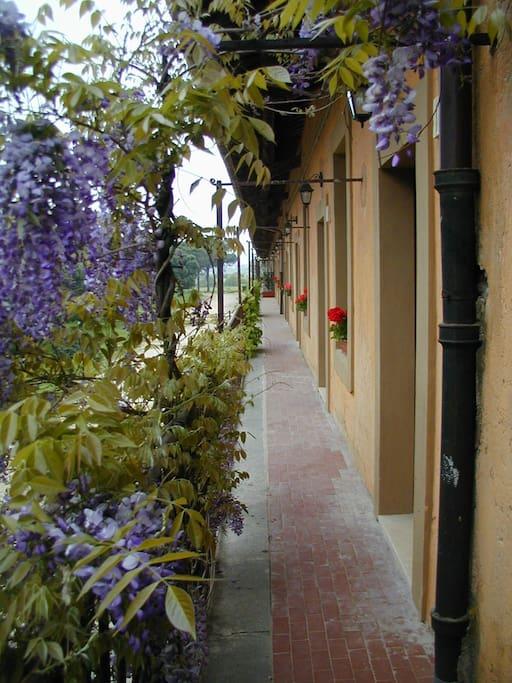 Appartaments BALCONATA