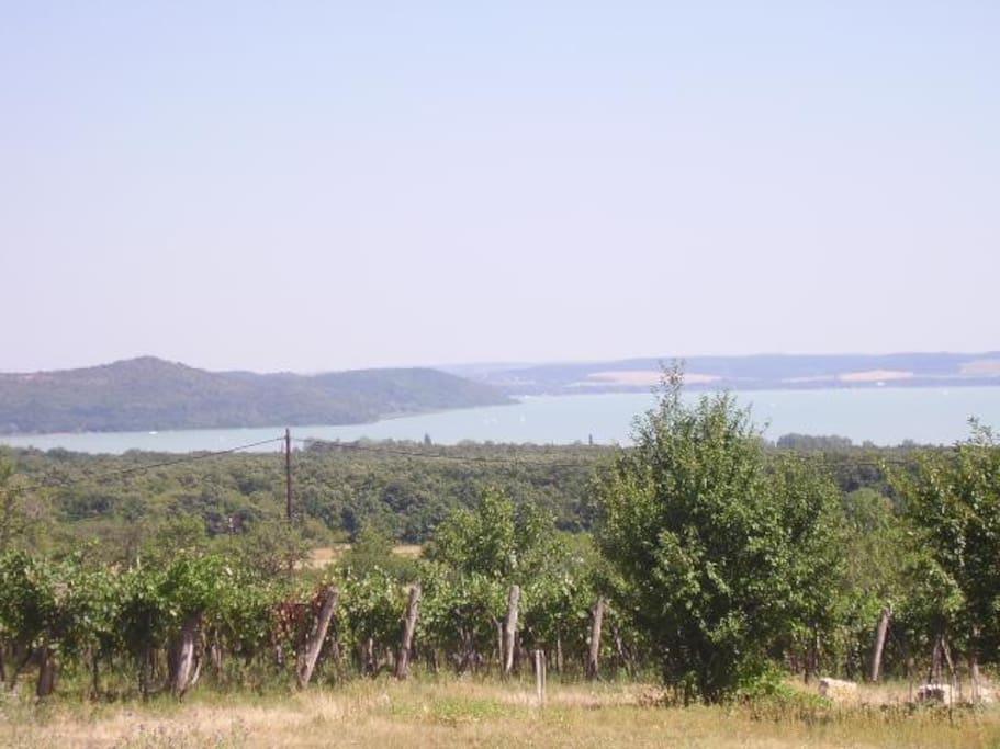 Vue sur le lac Balaton