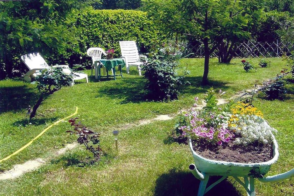 Le jardin...
