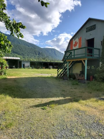 5 Acres of OrganicBlueberies for Rent- Cultus Lake