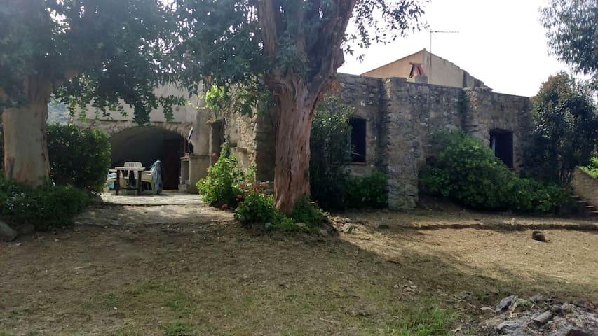 Traditional corsican Villa, Lozari Balagne CORSICA - belgodère  - House