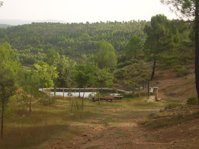 Natural springs at 5 km