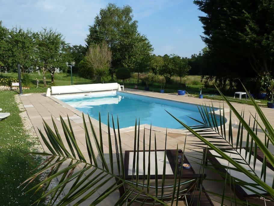 Notre piscine. Elle mesure 10x5 mètres.