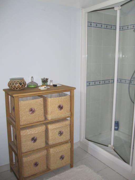 sdb spacieuse douche et toilettes