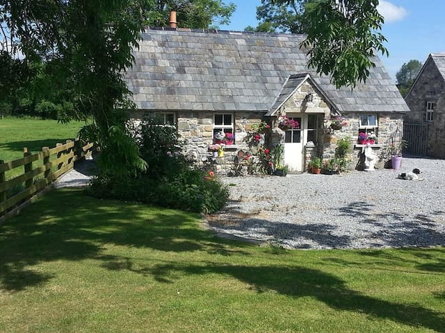 Enchanting Fairytale Cottage - piltown - House