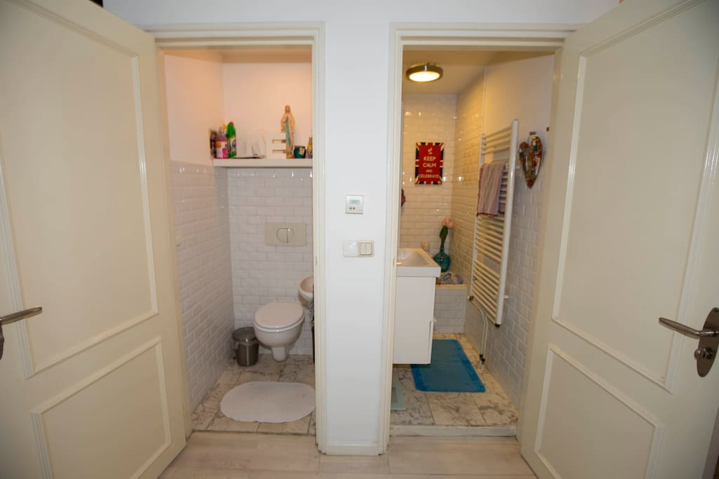 Toilet and bathroom with bath and shower