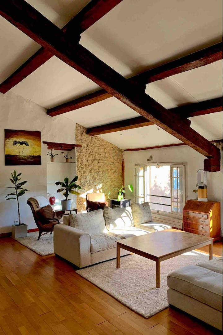 Stylish and spacious Narbonne centre apartment