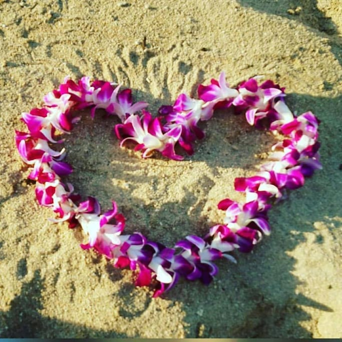 Lei has been used as a token to honor a guest in the Island!!! It is is our goal to honor you during your stay in the island and in our place. Our desire is to contribute in building good memories during your stay in the island! ALoha!!!