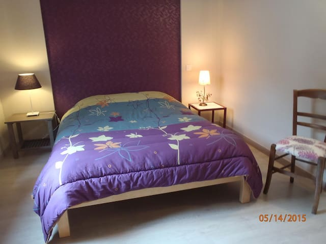 Amboise centre Chambre Violette - Amboise - Bed & Breakfast
