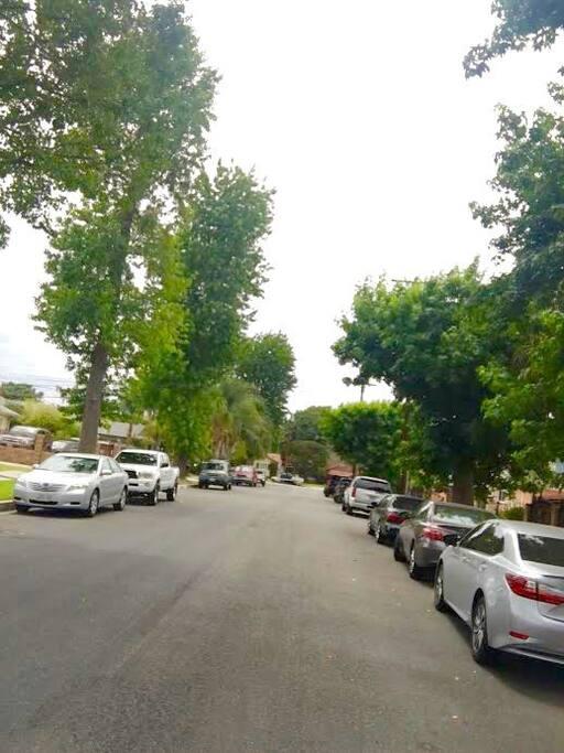 Tree-lined neighborly street.