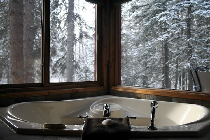 Cottage in the Forest - Sundre - Bed & Breakfast