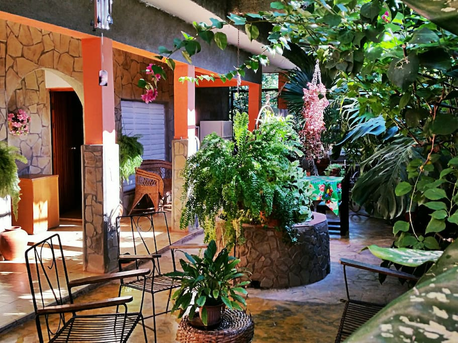 The Beautiful Garden Patio/Courtyard in the middle of the house!