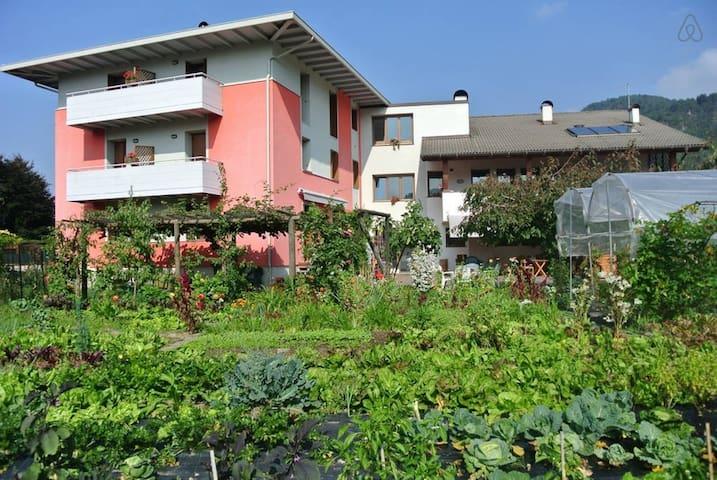 Agriturismo Bortolotti, appartamento LAGORAI